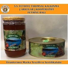 Salgı Çam Balı (1 Kg)