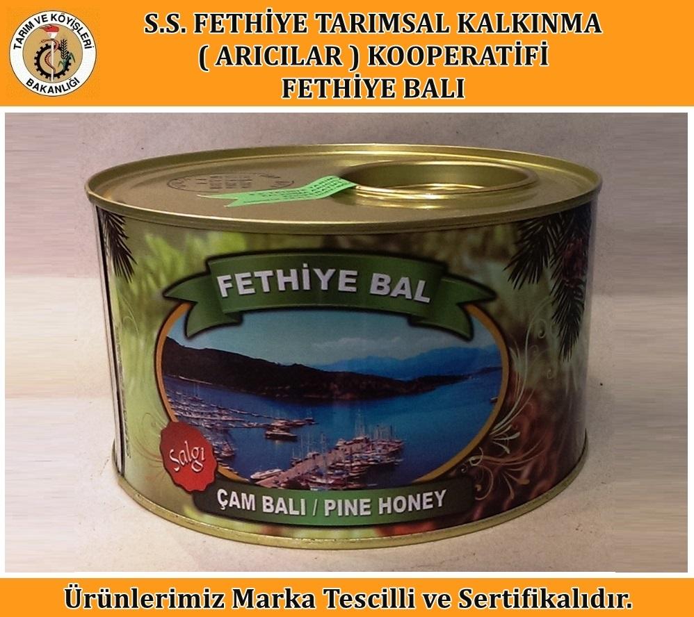 Salgı Çam Balı (2 Kg)
